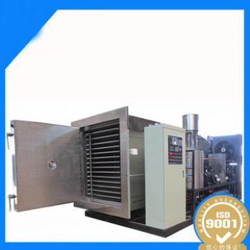 Hot Sales Custom Fast Freeze Blueberry Drying Machine