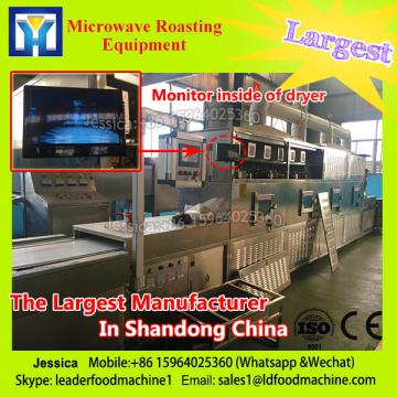 Industrial Fruit Chips Microwave Dryer/Drying Machine
