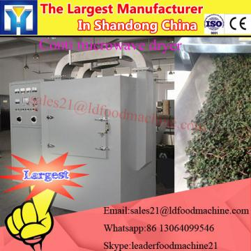 Stainless steel PLC control full automatic hot air vegetable fruits seafood fish dryer
