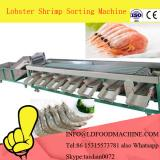 Seafood Processing Shrimp Washing Grading machinery