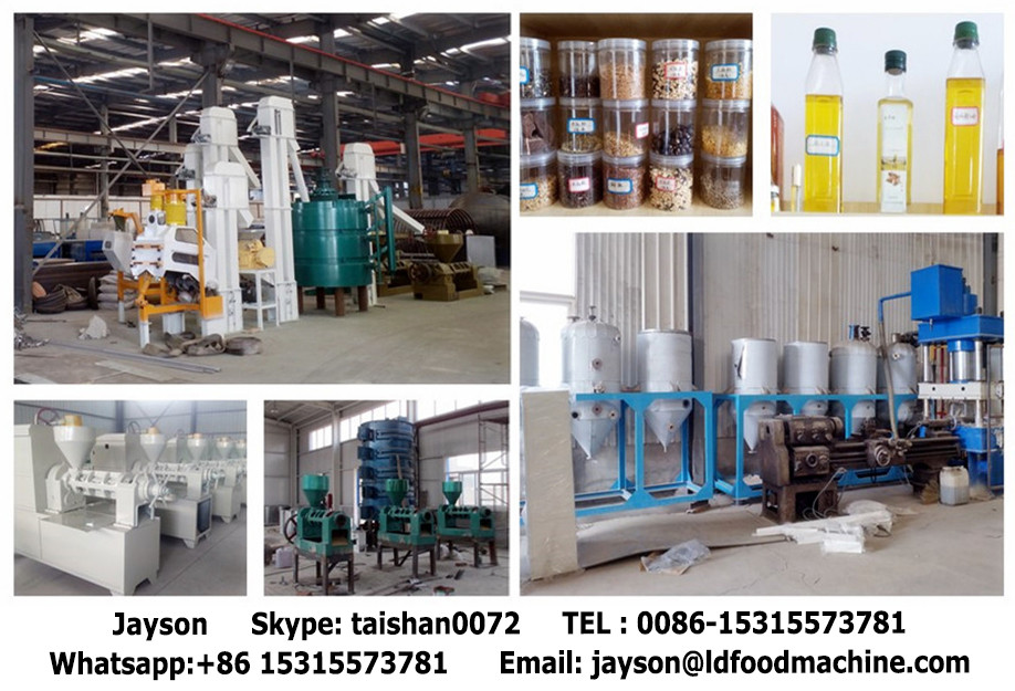 Palm,sesame,peanut, oil press machine/black seed oil press machine