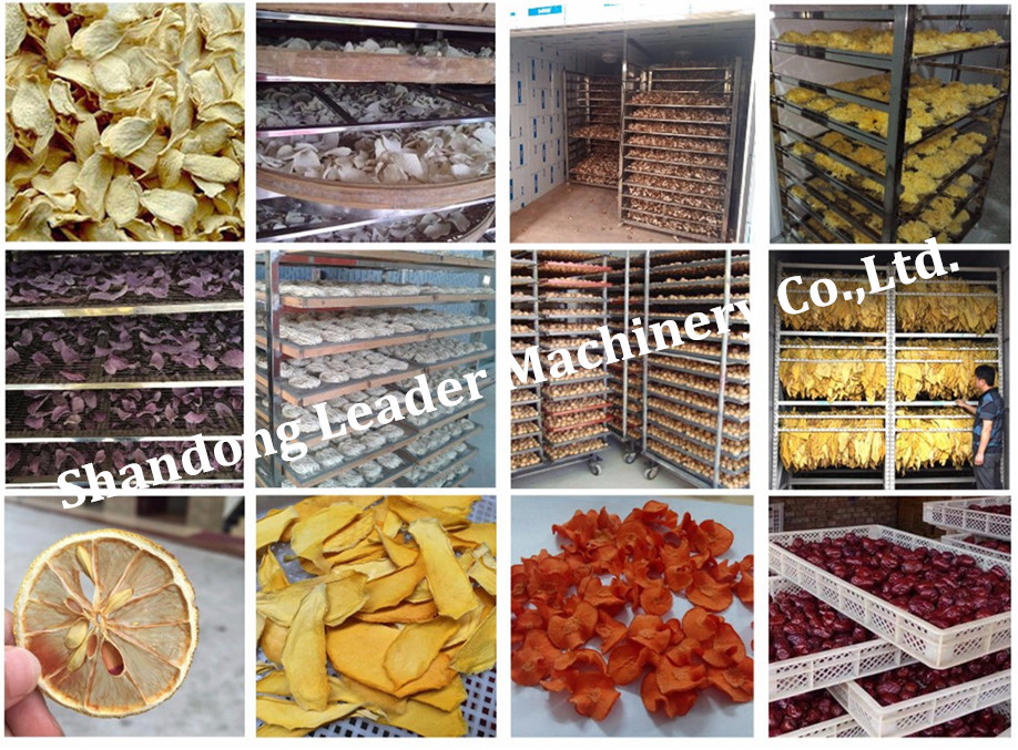 2017 New Design CE Microwave Fruit Dryer
