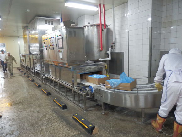 Meat Processing  Microwave Sterilization Machinery