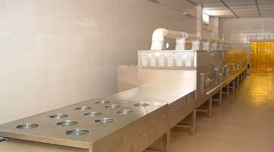 Ceramic  Microwave Drying Equipment