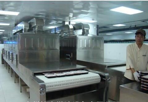 Unfreezing Microwave Heating Machine
