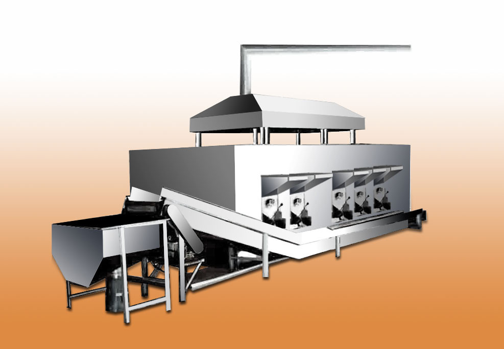 Peanut Microwave Roasting Machine