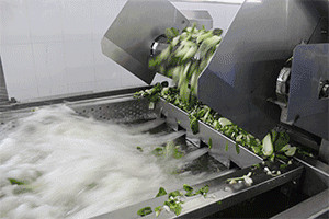 Washing Microwave Sterilization Machine
